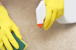 Carpet Cleaners Cape Town